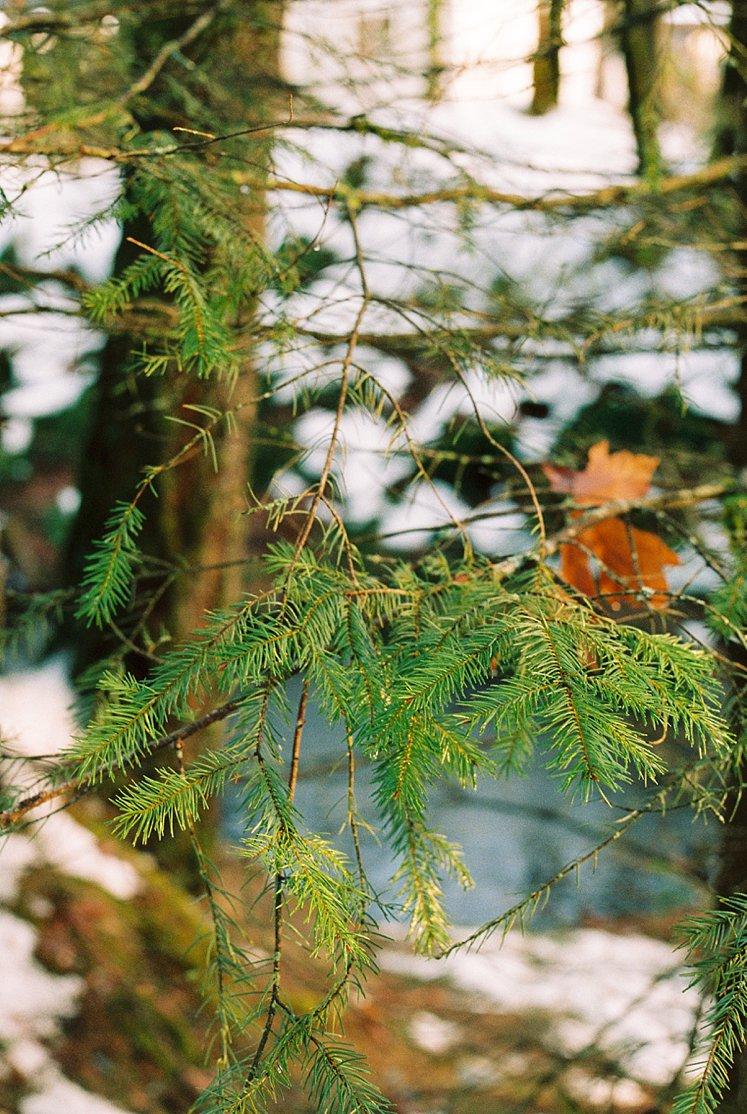 BC Film Photographer Hope BC Canada_0080