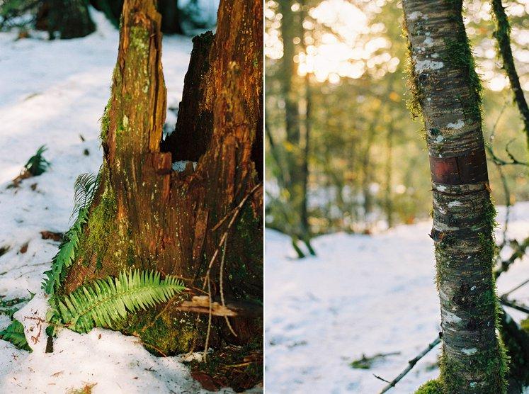 BC Film Photographer Hope BC Canada_0082